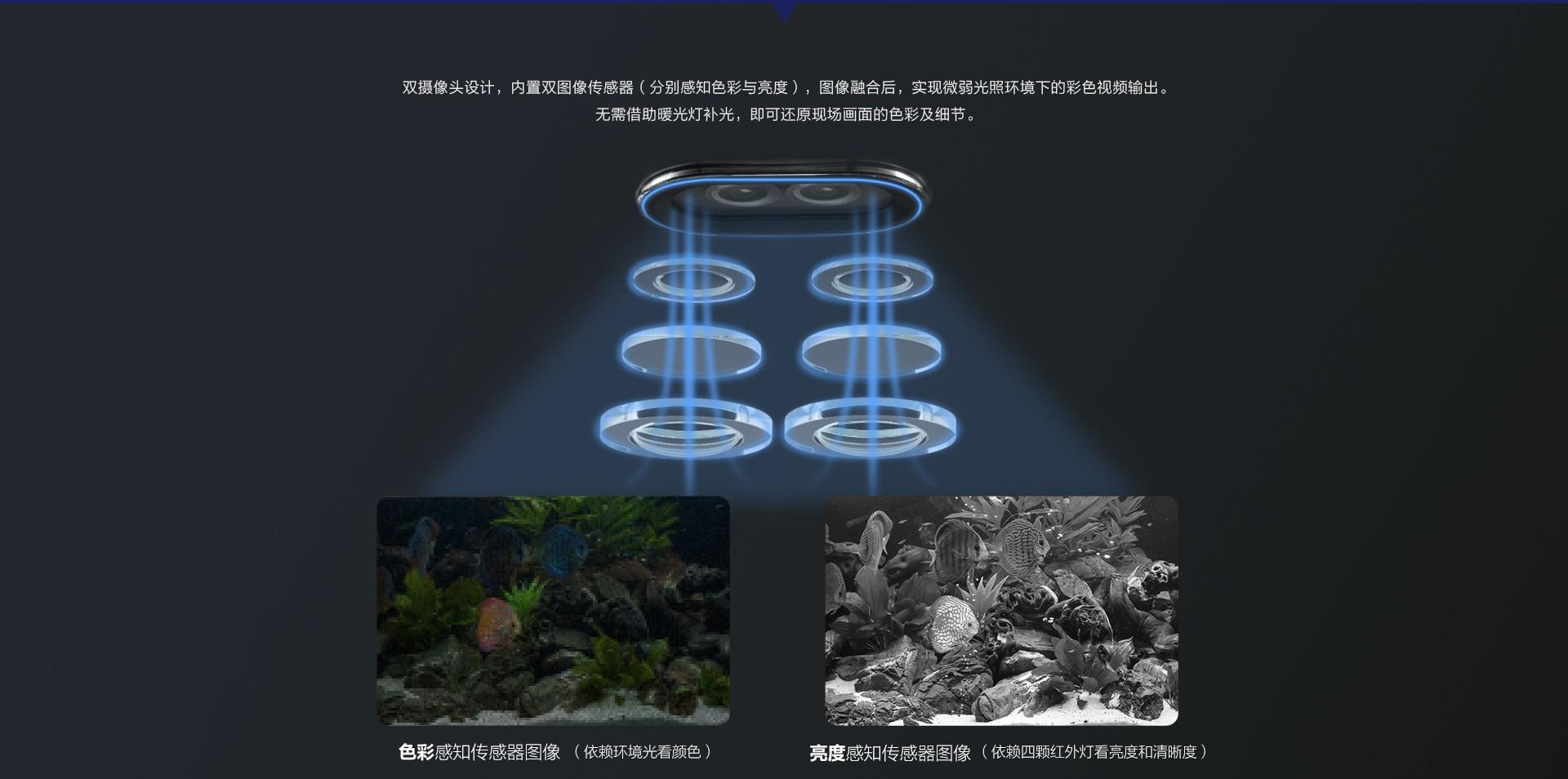 C5X-web_04.jpg