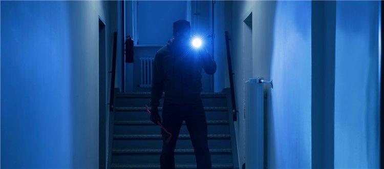 黑夜给了我黑色的眼睛,我却用它来抓…小偷!