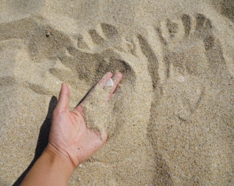 警惕!地球快没沙子了