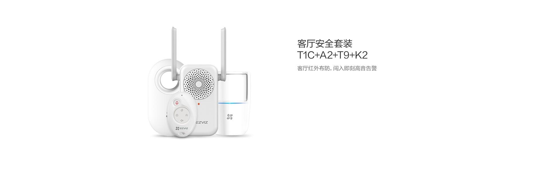 T1C+A2+T9+K2-2.jpg